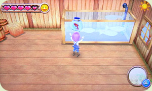 Your Fishing Shed | Harvest Moon: A New Beginning
